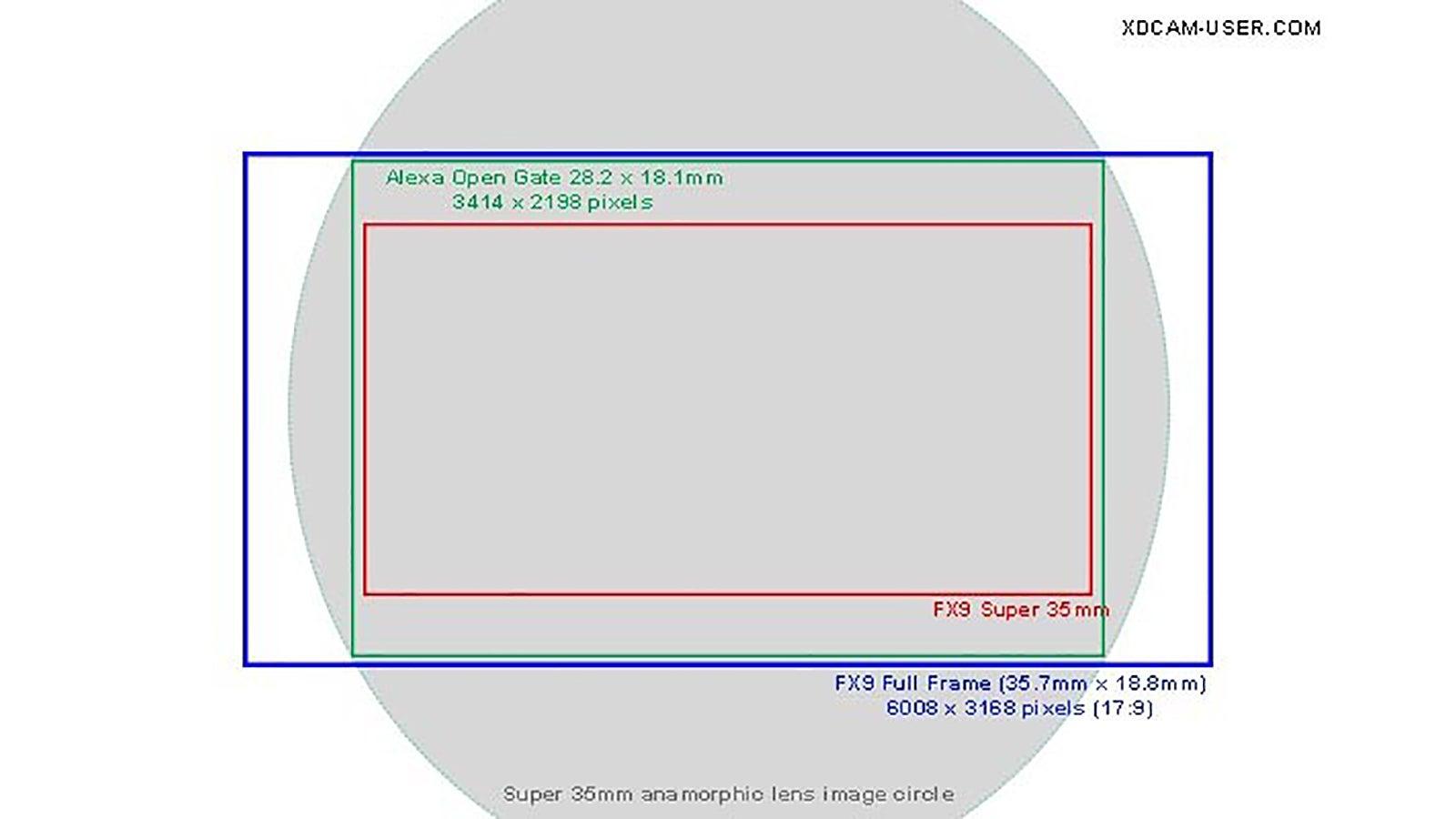 FX9-Image-circle-frame-lines1-1600.jpg