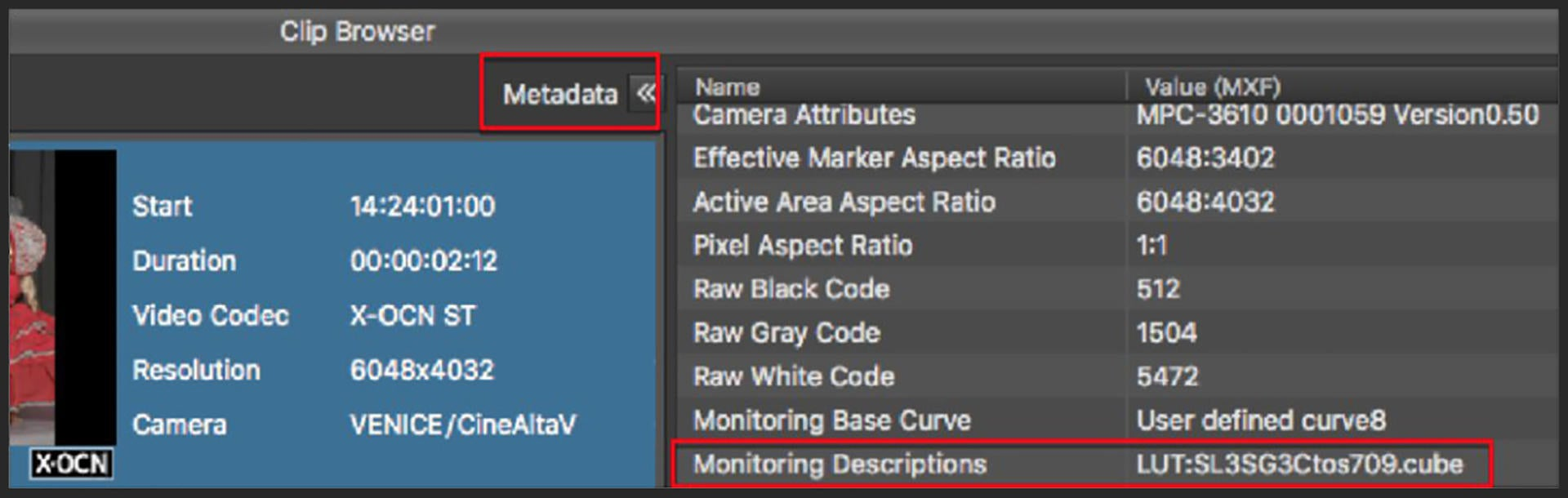Metadata-2.jpg